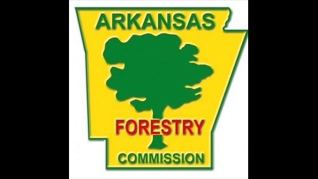 Forestry Commission Searching for Pilot, Plane Through the Night