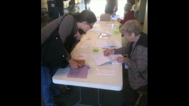 Election Committee Seeks Clarification on Voter ID Law