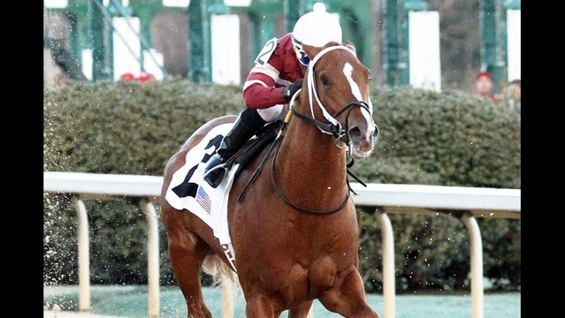 Tapiture Wins Southwest Stakes
