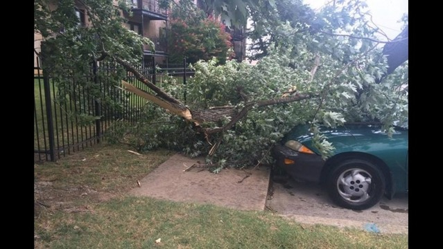 Roofs, Trees, Power Lines Damaged in Northwest Arkansas Storms