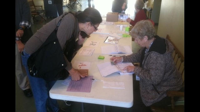 Briefs Filed by ACLU in Challenge of Arkansas Voter ID Law