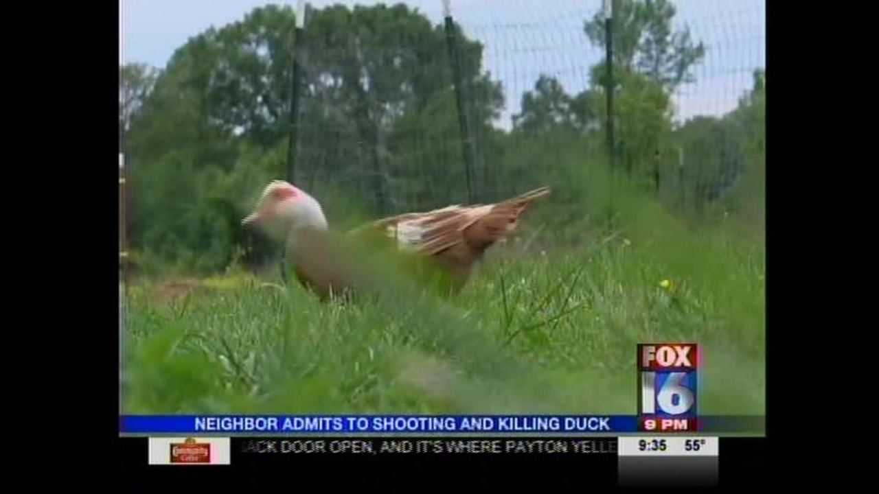 White County Man Admits to Shooting Neighbor's Duck