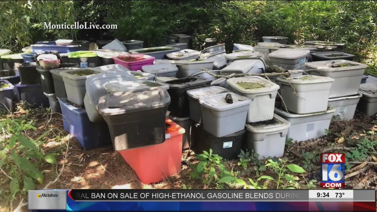 Hundreds Of Dead Dogs Found Inside Containers Behind Monticello Home