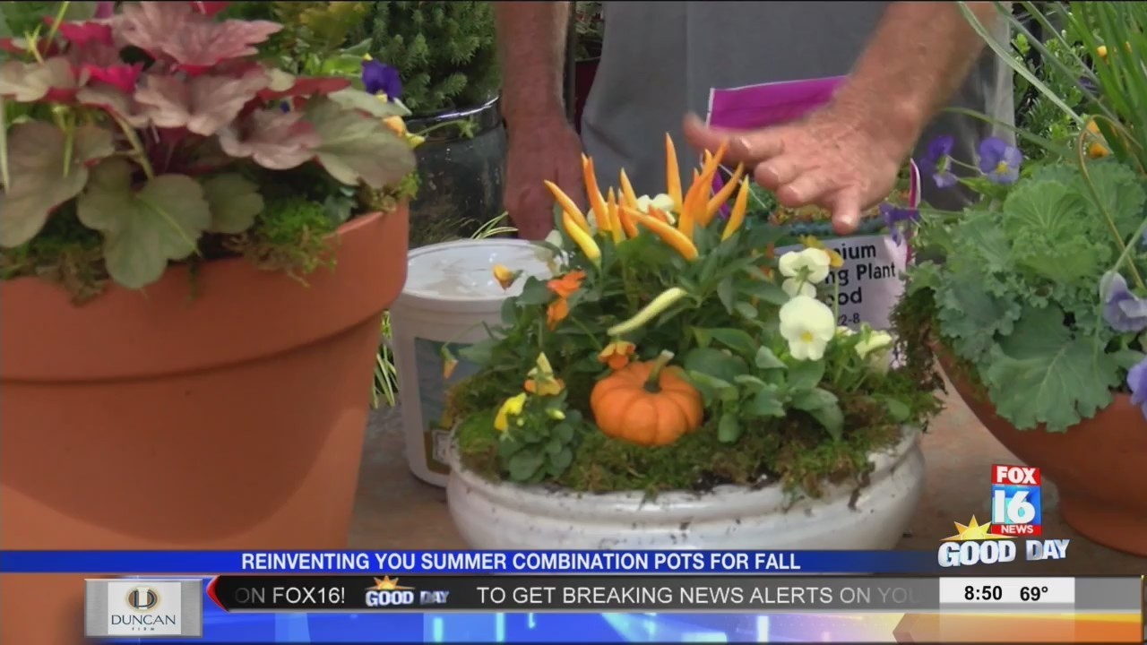 good earth garden center fall combination pots - Good Earth Garden Center