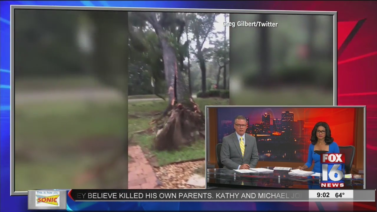 Hurricane Michael Tears Off Roofs and Trees
